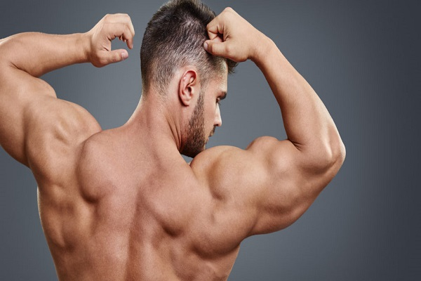 increase muscle strength