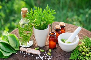 Herbs Are Wonders for Women