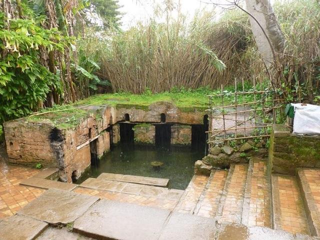 Citadel of Chellah Gardens
