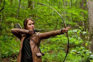 Bow and Arrow Hunter