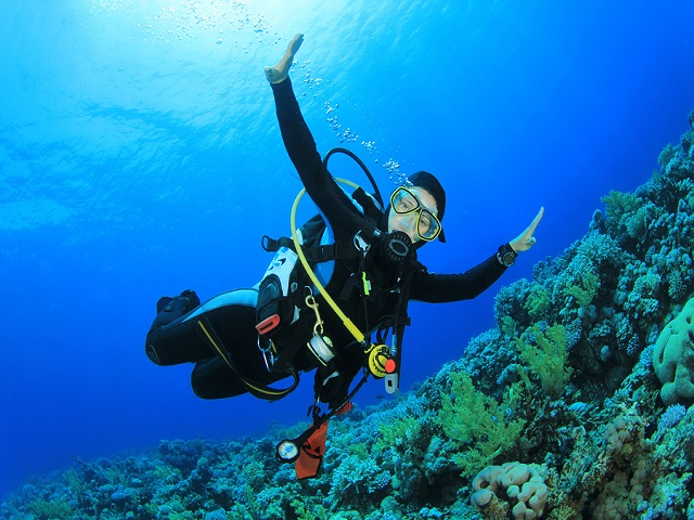 Tips for Traveling by Airline with Diving Equipment