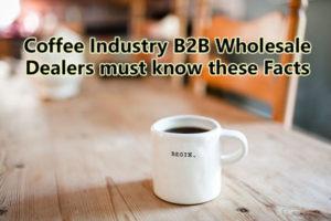 B2B Wholesale Dealers