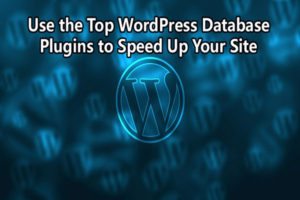 WordPress Database Plugins