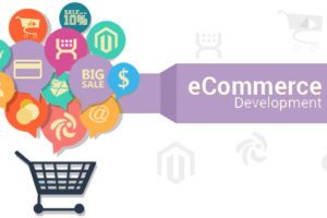 Ecommerce Development Agency